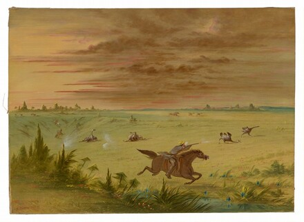 Ostrich Chase, Buenos Aires - Auca