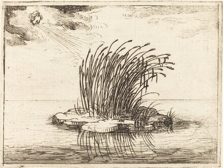 The Reeds and the Wind