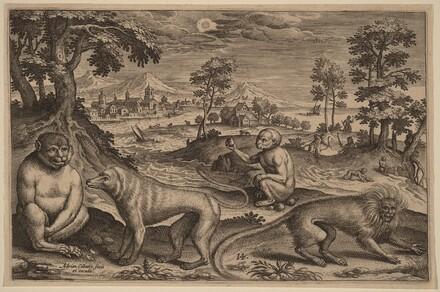 Animalium Quadrupedum
