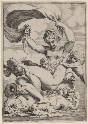 Venus or Galatea Supported by Dolphins