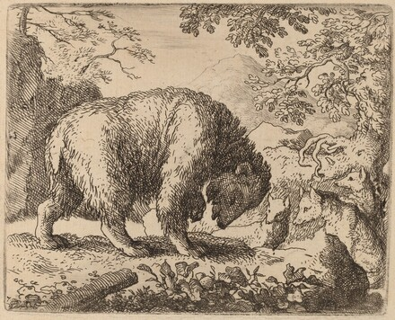 The Bear Distracted with Talk of Honey