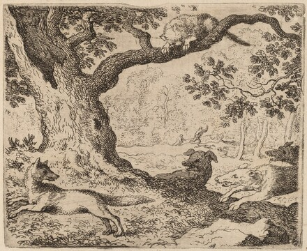 Reynard's Father and the Cat Pursued by Hounds