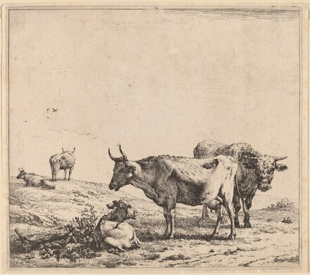 Cow, Bull and Calf