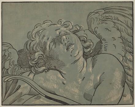 Cupid Asleep