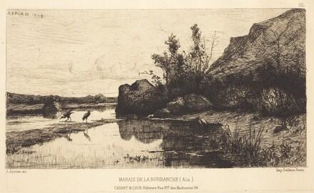 Marais de la Burbanche