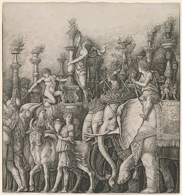 The Triumph of Caesar: The Elephants
