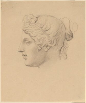 Classical Head in Profile
