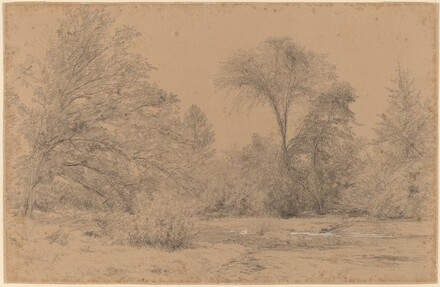 Landscape, Early Spring