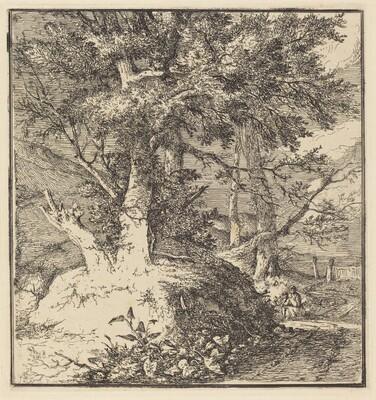 Tree on a Mound