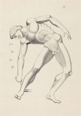 Tydaeus