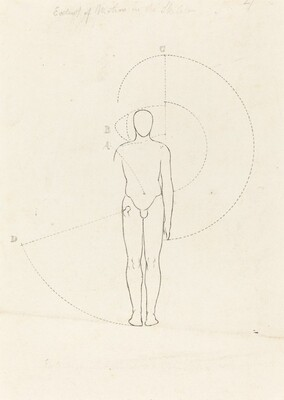 Extent of Motion, One Figure