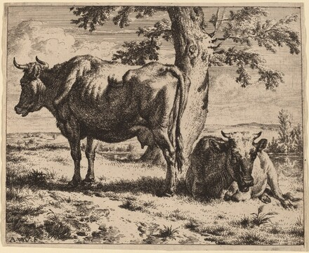 Two Cows under a Tree