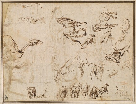 Studies of Horses [verso]