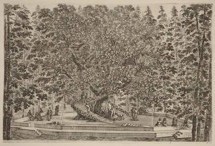 The Inhabited Tree