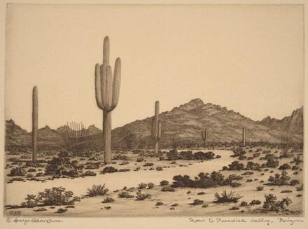 Road to Paradise Valley, Arizona
