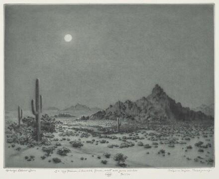 Arizona Night (Near Needles, Arizona)