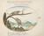 Animalia Qvadrvpedia et Reptilia (Terra): Plate LIII
