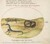 Animalia Qvadrvpedia et Reptilia (Terra): Plate LVII