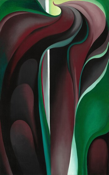 Jack-in-Pulpit Abstraction - No. 5