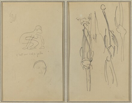 Crouching Monkey and Man's Head; Bones and Muscles [verso]