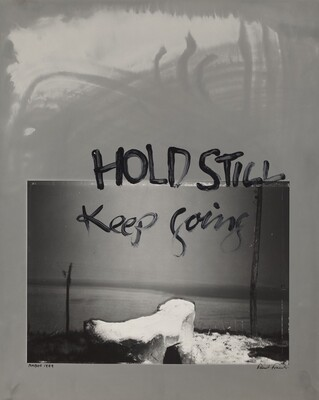 Hold Still--Keep Going