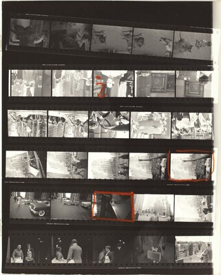 Guggenheim 116/Americans 27--New York City