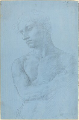 Bust of Nude Man