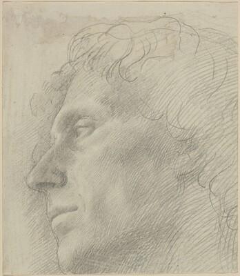 Head of a Man Facing Left