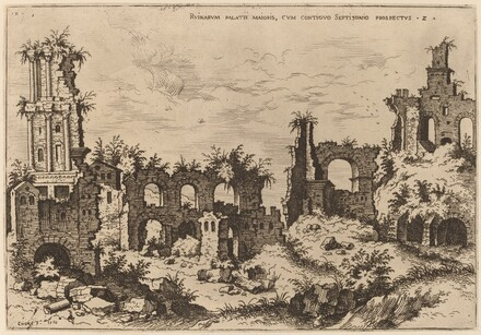 Ruins on the Palatine with the Septizonium