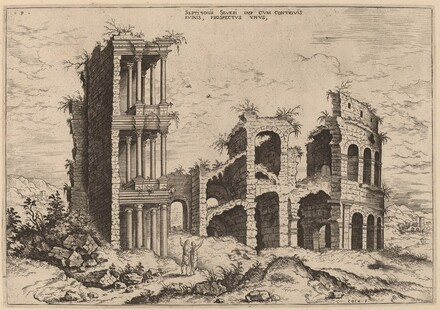 The Septizonium and the Colosseum