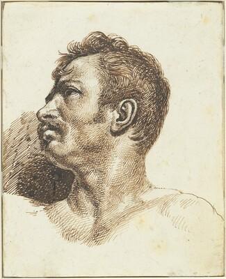 Head of a Man [recto]