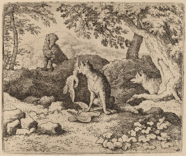 The Badger Goes to Warn Reynard