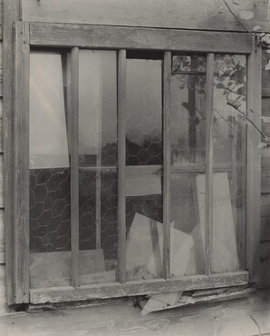 image: Window