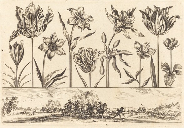 Flower Print no.2