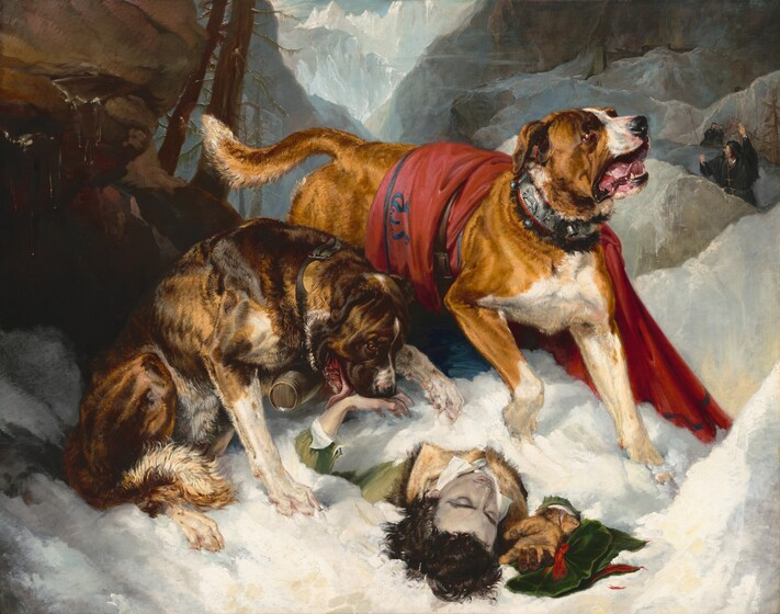 Sir Edwin Landseer, Alpine Mastiffs Reanimating a Distressed Traveler, 1820