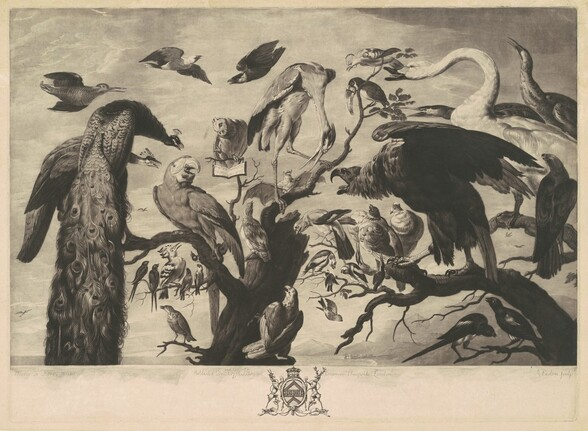 A Concert of Birds