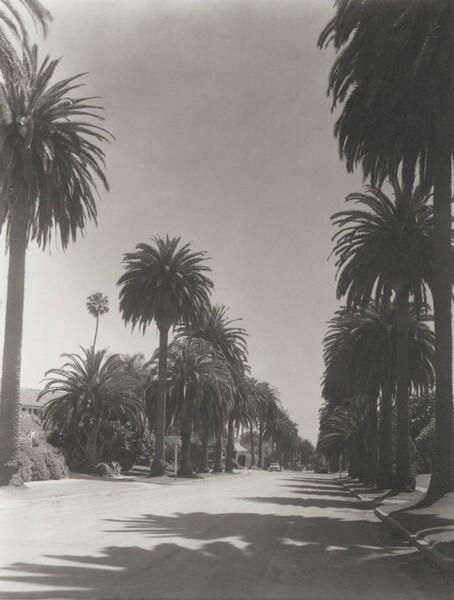 Georgina, Santa Monica
