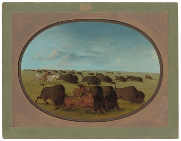 Buffalo Chase, with Accidents