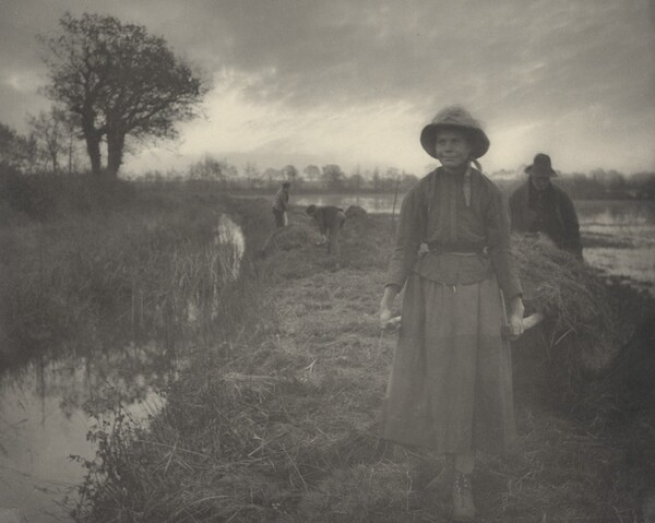 Poling the Marsh Hay