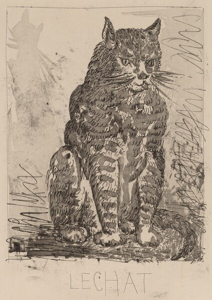 Le Chat (The Cat)