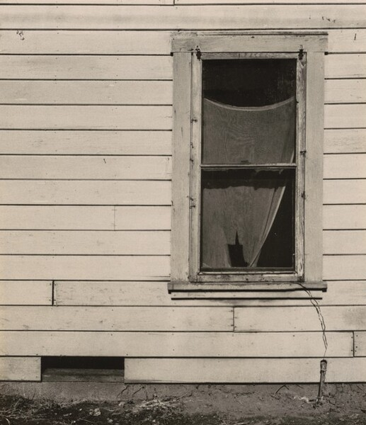 Tattered Curtain in Window, Pomona, California