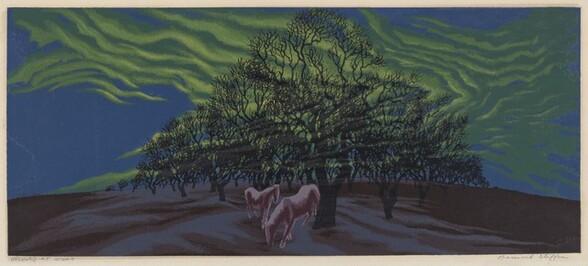 Orchard at Night
