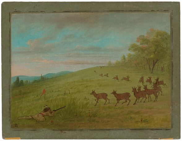 Antelope Shooting - Assinneboine