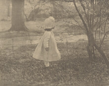 Spring—The Child