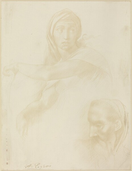 Study of Delphic Sibyl; Head of a Man