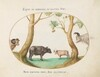 Plate 6: A Variety of Oxen with a Ram and a Water Buffalo(?) by a Plane Tree