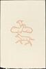 Second Book: Three Goats, Third Plate (Chevreaux, troisieme planche)