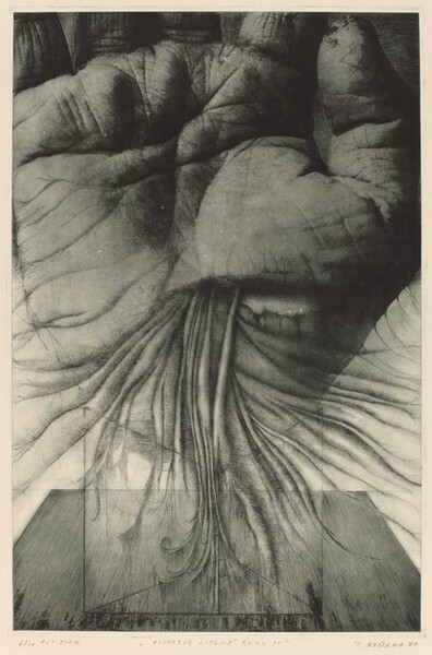 Historie lidské ruky IV/The History of Human Hands IV