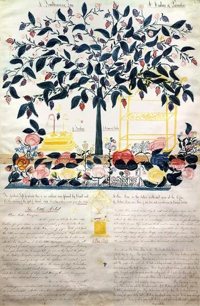 A Fruit-Bearing Tree; A Cedar of Paradise