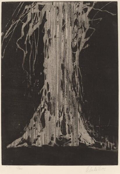Strom (Tree)